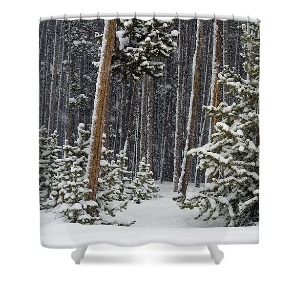 Woodland Snowstorm In Yellowstone Shower Curtain