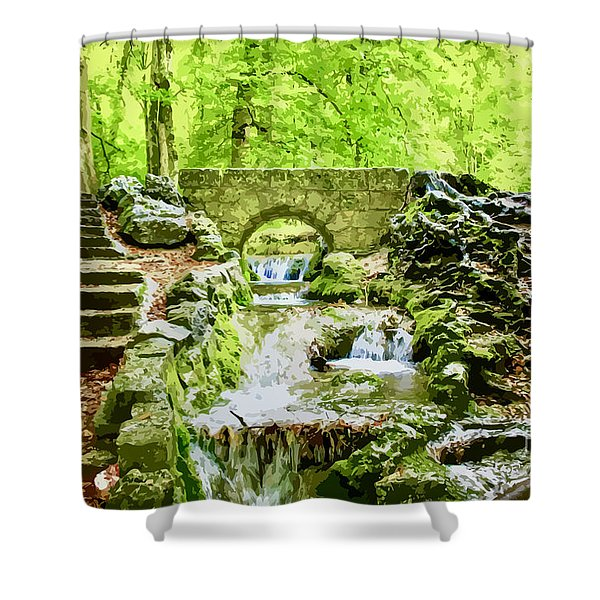Woodland Steps And Stream Shower Curtain