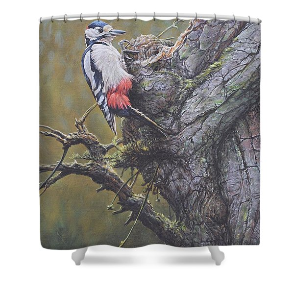 Shower Curtain featuring the painting Woodpecker On Tree by Alan M Hunt