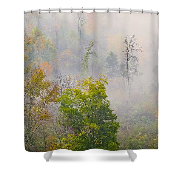 Woods From Afar Shower Curtain
