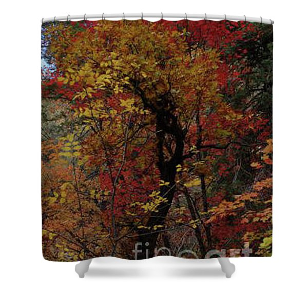 Woods In Oak Creek Canyon, Arizona Shower Curtain
