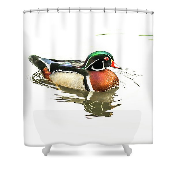 Woody Shower Curtain