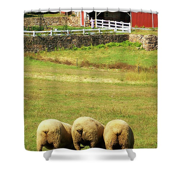 Wooly Bully Shower Curtain