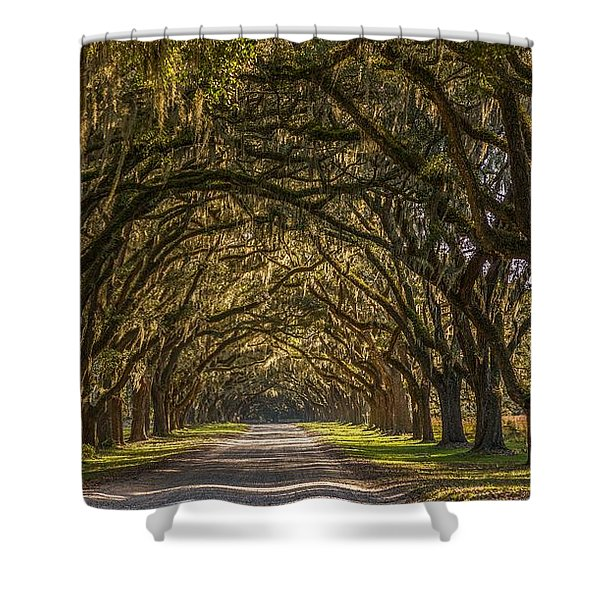 Wormsloe Historic Site Shower Curtain