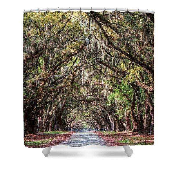 Wormsloe Plantation Oaks Shower Curtain