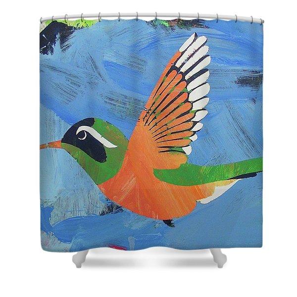 Xantus Hummingbird Shower Curtain