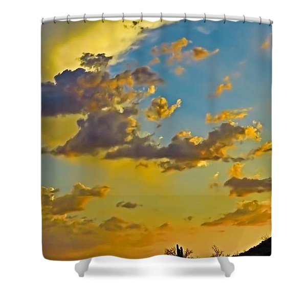 Y Cactus Sunset 10 Shower Curtain