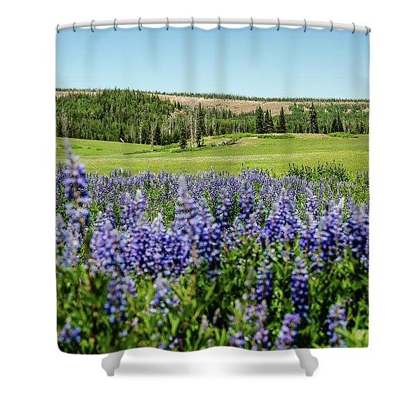 Yard Full Of Wildflowers Shower Curtain