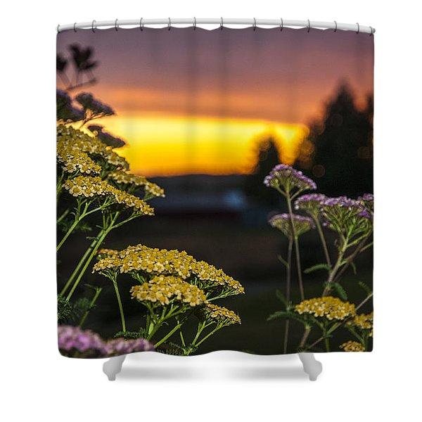 Yarrow At Sunset Shower Curtain