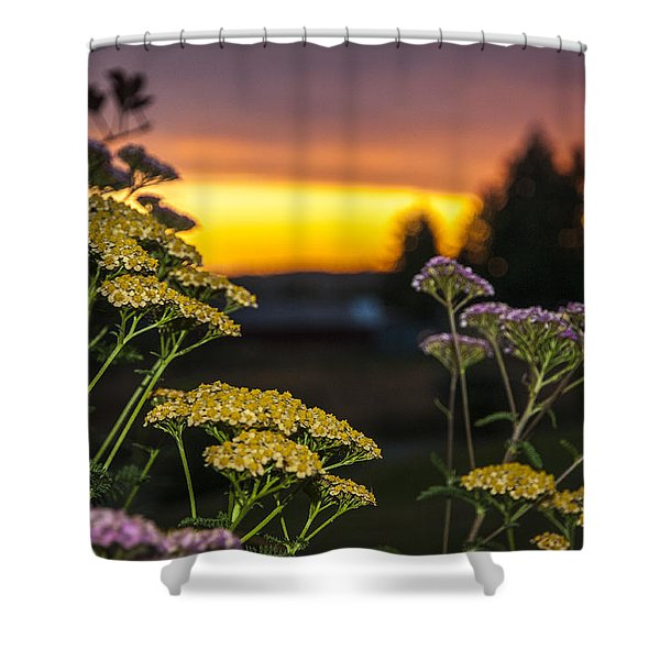 Yarrow At Sunset Shower Curtain