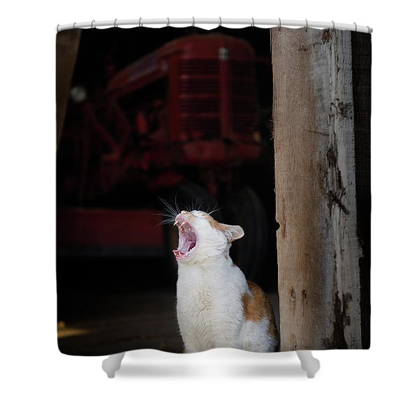 Yawning Barn Cat And Tractor Shower Curtain