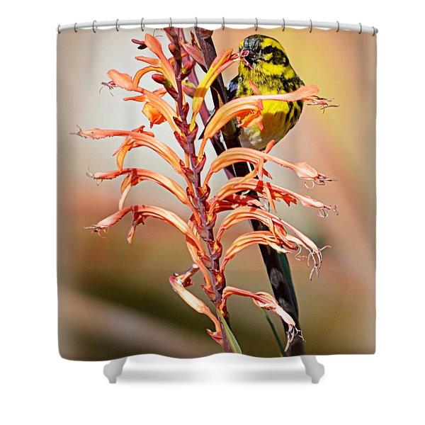 Yellow Bird Hi Shower Curtain