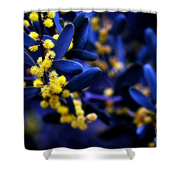 Yellow Bursts In Blue Field Shower Curtain