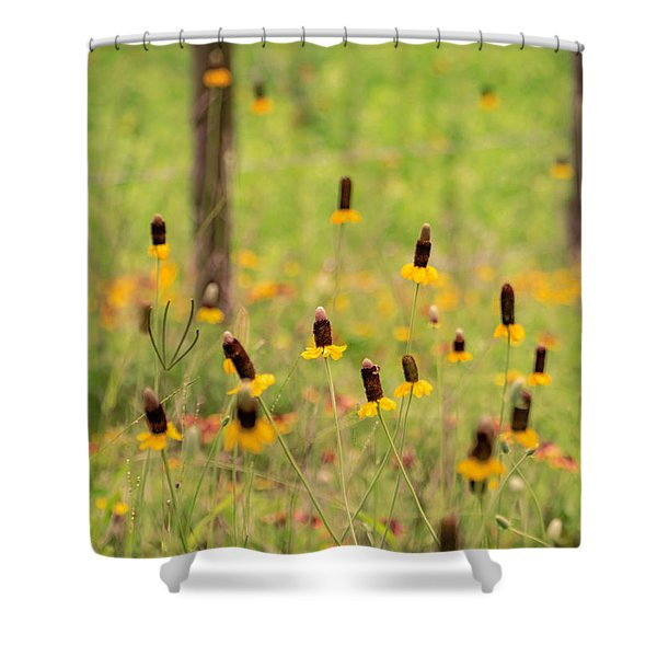 Yellow Cone Flower Shower Curtain
