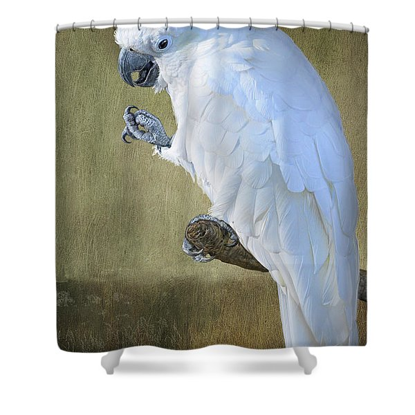 Yellow Crested Cockatoo Portrait Shower Curtain