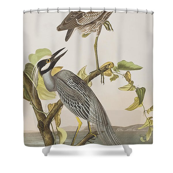 Yellow Crowned Heron Shower Curtain