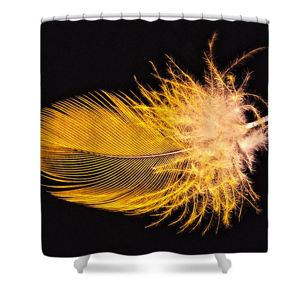 Yellow Feather Macro Shower Curtain
