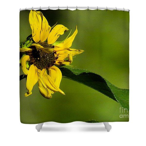 Yellow Flower 1 Shower Curtain