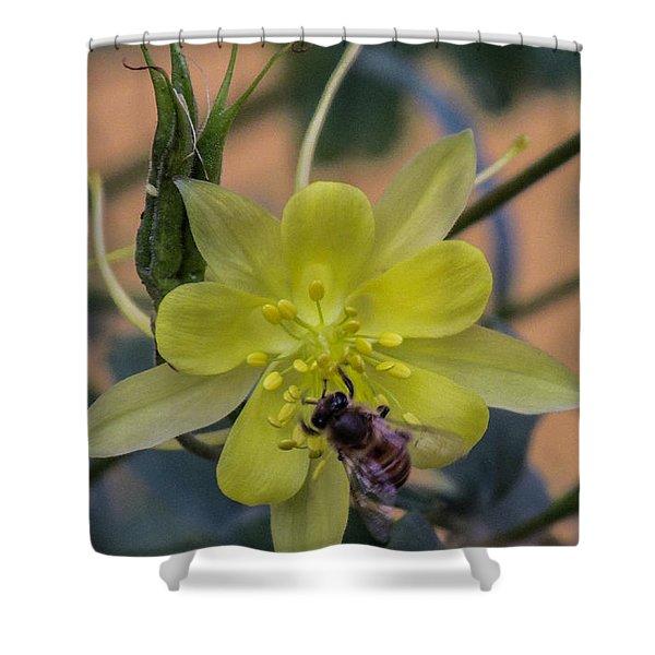 Yellow Flower 5 Shower Curtain