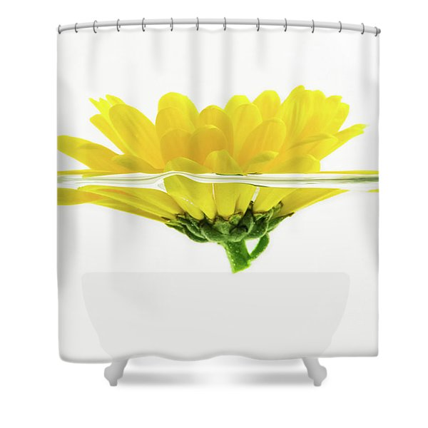 Yellow Flower Floating In Water Shower Curtain