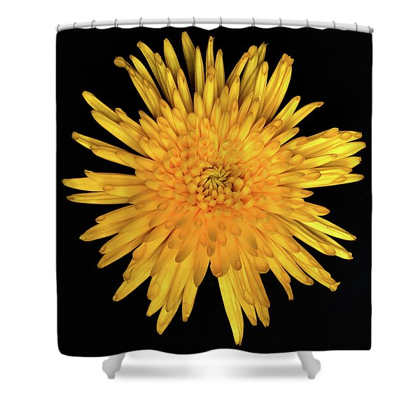 Yellow Flower Macro Shower Curtain