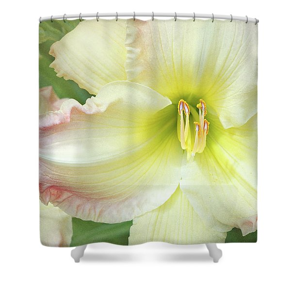 Yellow Folds And Pistils Shower Curtain