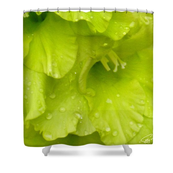 Yellow Gladiola Refreshed Shower Curtain