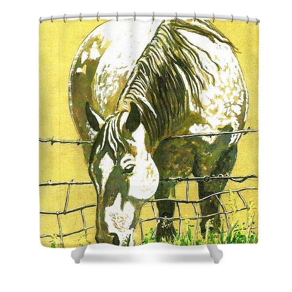Yellow Horse Shower Curtain