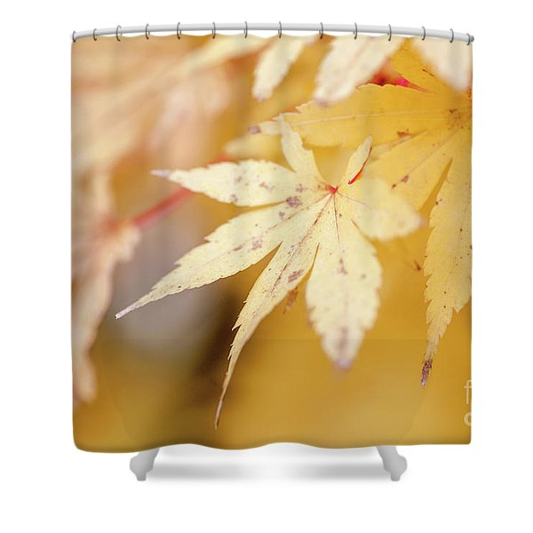 Yellow Leaf With Red Veins Shower Curtain