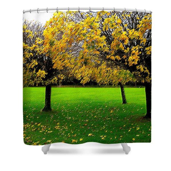 Yellow Leaves At Muckross Gardens Killarney Shower Curtain