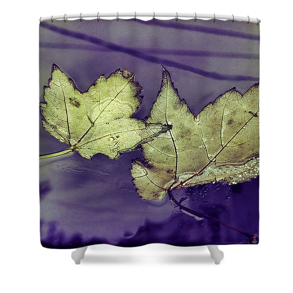 Yellow Leaves On  Windshield Shower Curtain
