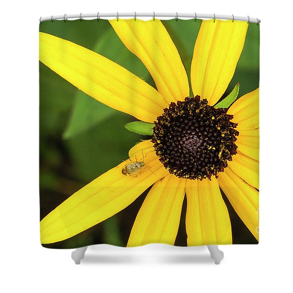 Yellow Petaled Flower With Bug Shower Curtain