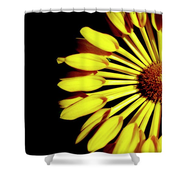 Yellow Petals Shower Curtain