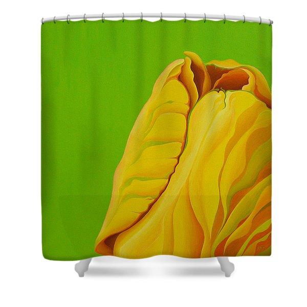 Yellow Somebuddy Shower Curtain