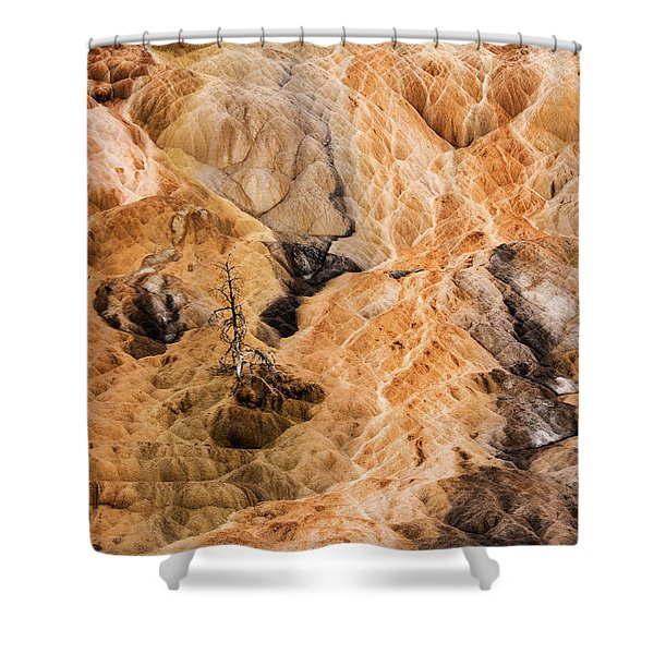 Shower Curtain featuring the photograph Yellow Stone National Park Abstract by Mae Wertz