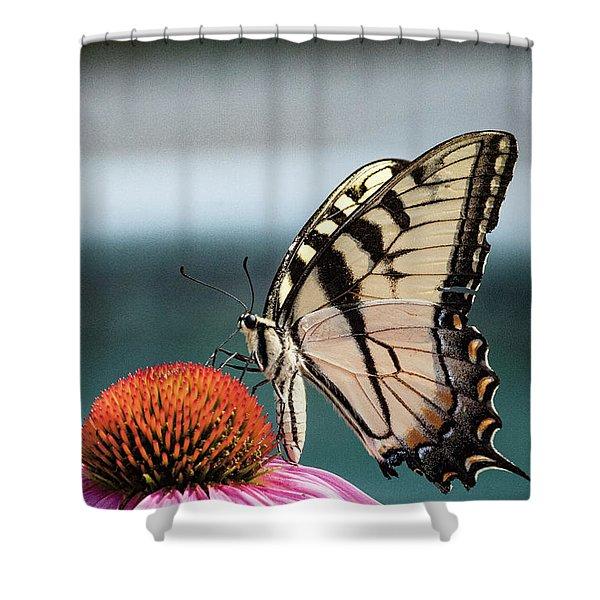Yellow Swallowtail II Shower Curtain
