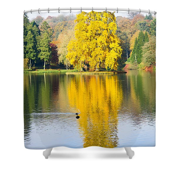 Yellow Tree Reflection Shower Curtain