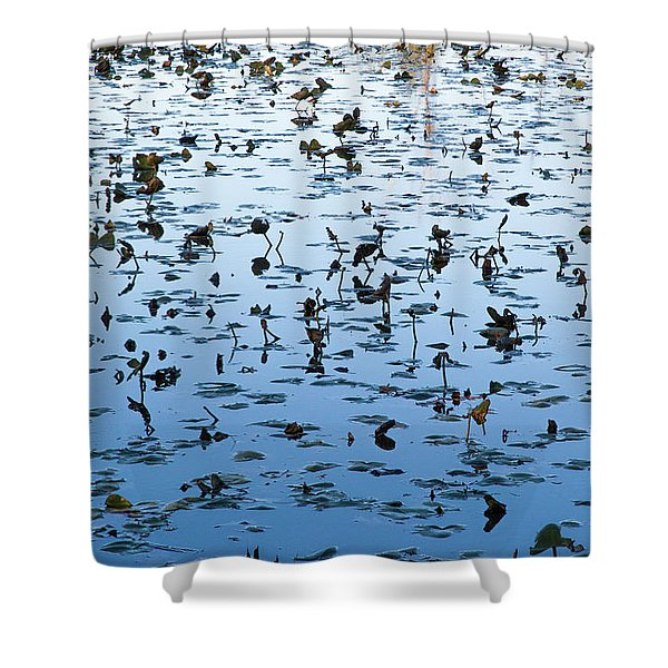Yellow Water Lilies In Deep Silhouette Shower Curtain