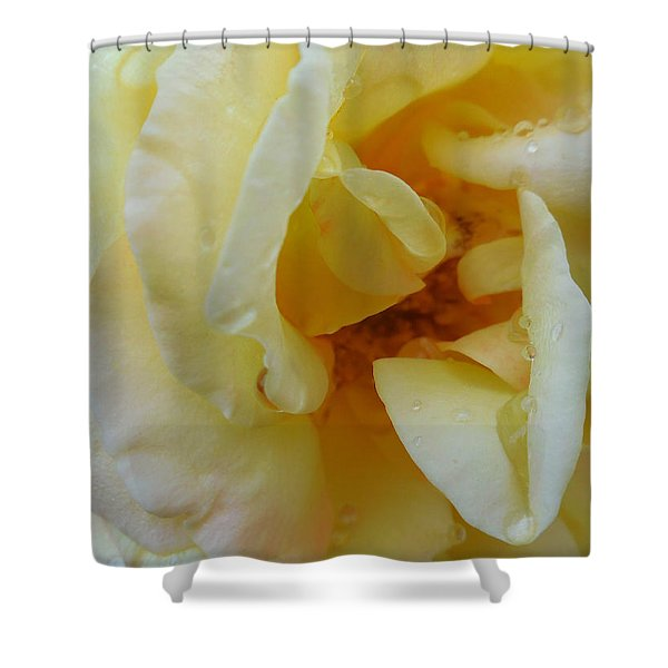 Yellow Wet Rose Shower Curtain