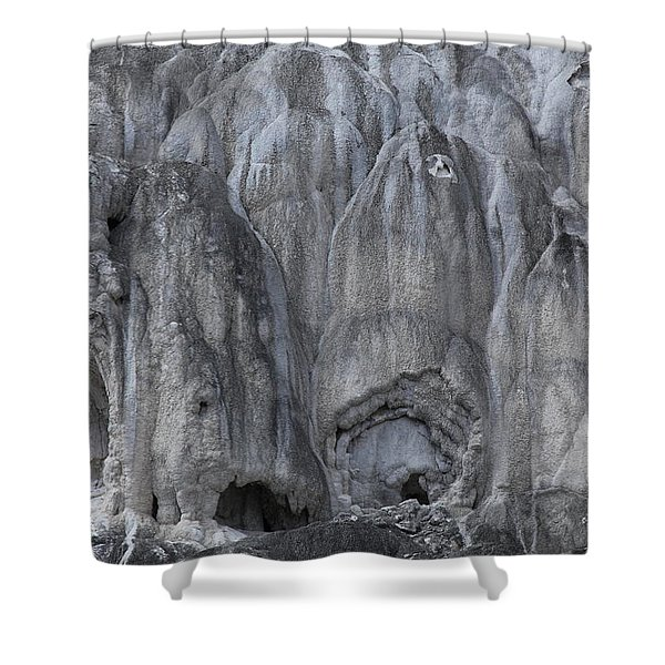 Yellowstone 3683 Shower Curtain