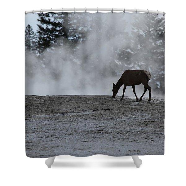 Yellowstone 5456 Shower Curtain