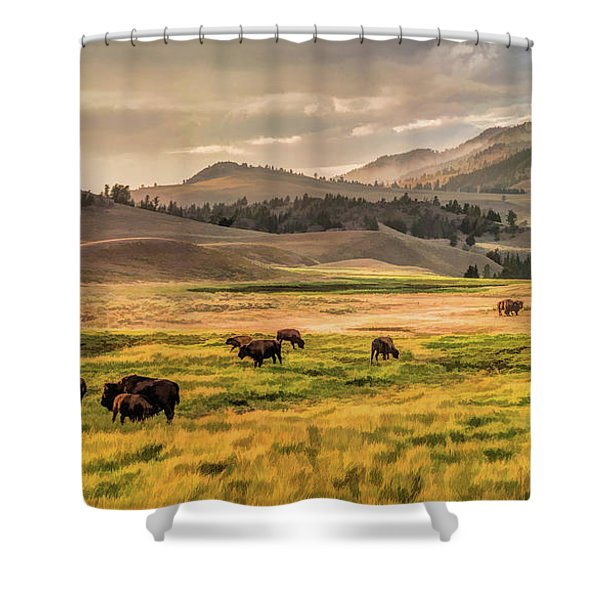 Yellowstone National Park Lamar Valley Bison Grazing Shower Curtain