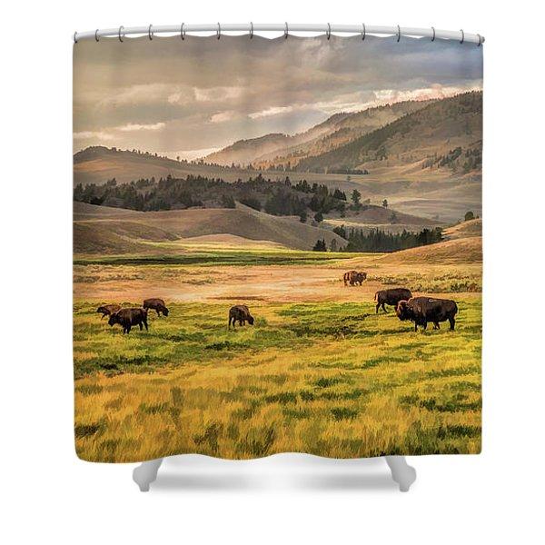 Yellowstone National Park Lamar Valley Bison Grazing Shower Curtain