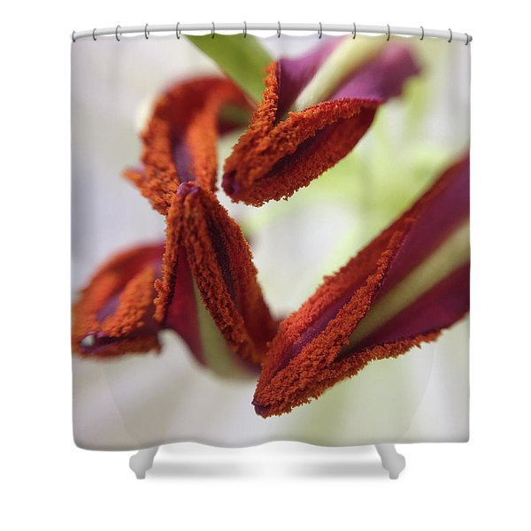 Yes, I'm Calling This Ballerina Slippers Shower Curtain