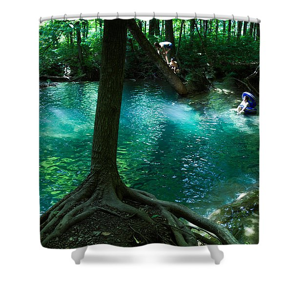 Yesterday, When I Was Young Shower Curtain