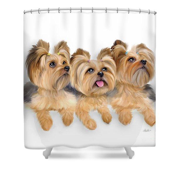 Yorkie Trio Shower Curtain