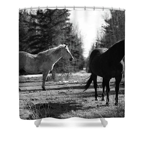 You Me N Him Shower Curtain