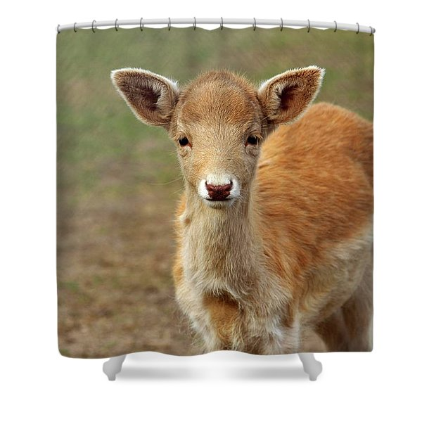 Young And Sweet Shower Curtain
