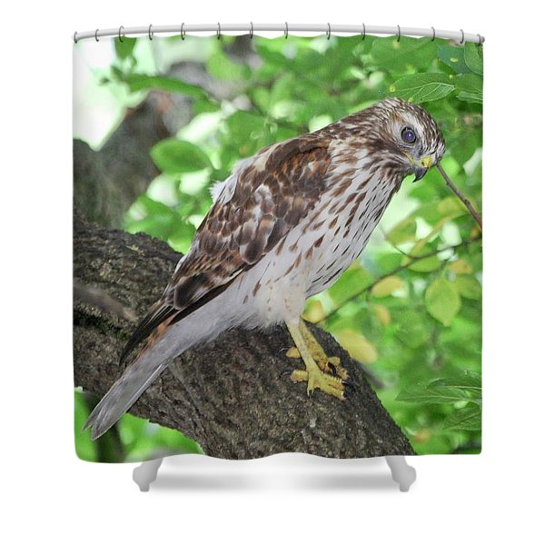 Young Red Shouldered Shower Curtain