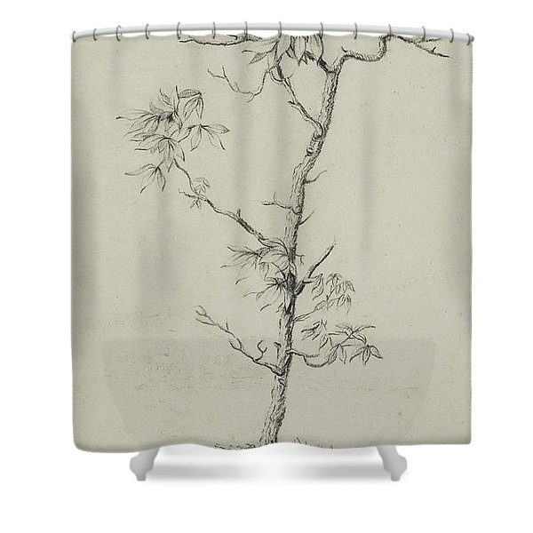 Young Hickory, 1823 Shower Curtain